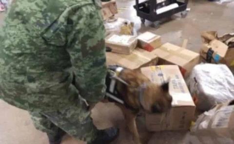 Personal militar aseguró 27 litros de metanfetamina en aeropuerto potosino