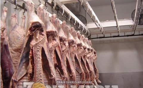 Descartan carne con clembuterol