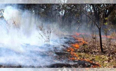 Exhorta a prevenir los incendios