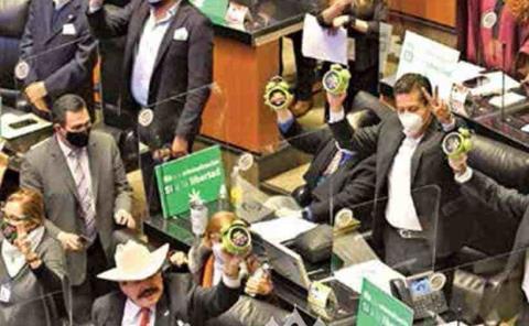 Senado aprueba uso  lúdico de la mariguana;