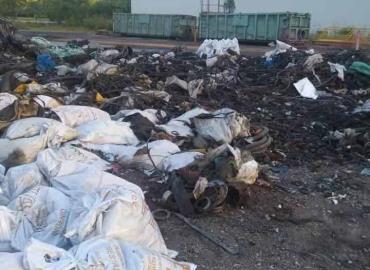 Gobierno Federal solapó el ecocidio
